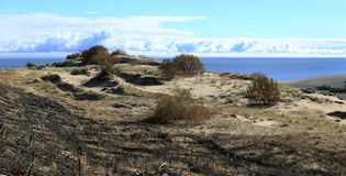 Sandy dunes of Baltic coast Stock Image
