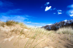 Sandy dunes and blue sky Royalty Free Stock Image
