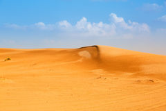 Sandy dunes in the desert near Abu Dhabi Royalty Free Stock Image