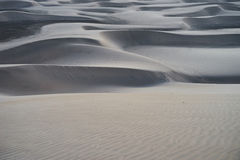 Sandy dunes in desert at sunrise in the early morning Royalty Free Stock Photos