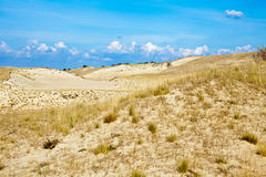 Sandy Dunes and Dry Grass Royalty Free Stock Photo
