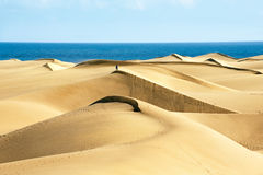 Sandy dunes Stock Image