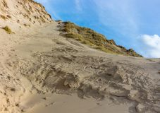 Sandy dunes hill with dune grass at the seaside of northern holland. stock photos