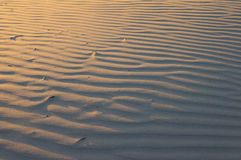 Sandy dunes Royalty Free Stock Image