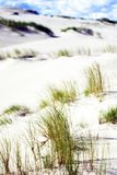 Sandy dunes near the sea Royalty Free Stock Photos