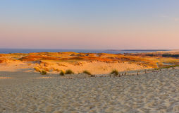 Sandy dunes during sunset. Curonian Spit, Lithuania Royalty Free Stock Image