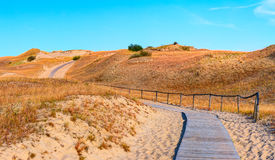 Sandy dunes during sunset. Curonian Spit, Lithuania Royalty Free Stock Photography