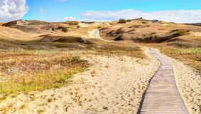 Sandy dunes during sunset. Curonian Spit, Lithuania Royalty Free Stock Photos