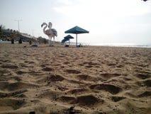 Sandy-Erde stockbilder