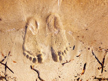 Sandy feet Stock Images