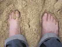 Sandy Feet. On the beach Stock Image