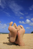 Sandy feet on a beach Stock Photography
