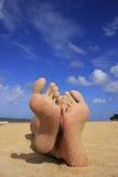Sandy feet on a beach Stock Photography