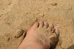 Sandy feets Stock Photos
