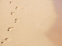 Sandy Footprints. A trail of footprints along the water's edge Royalty Free Stock Images