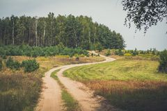 Sandy forest road in europe. stock photos