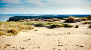 Sandy Grey Dunes Royalty Free Stock Photos
