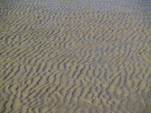 Sandy ground of mudflat Stock Images
