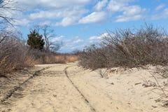 Sandy Hook Trail in Nationaal Park Royalty-vrije Stock Foto