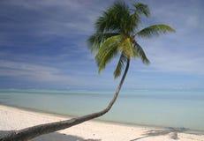 sandy idylliczny na plaży Fotografia Stock