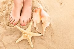 A sandy image of feet with a starfish and a snail Stock Image