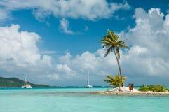 Sandy Island met een palm binnen de lagune stock foto's
