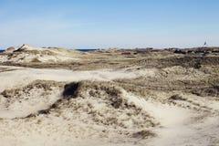Sandy krajobraz Obraz Royalty Free