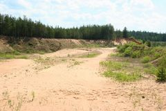 Sandy landscape in forest Royalty Free Stock Photography