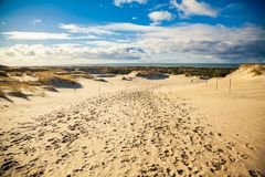 Sandy landscape at the Curonian Spit royalty free stock photography