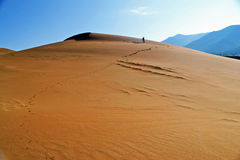 Sandy Mountain. Early morning on the Sand Dunes royalty free stock image