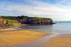 sandy na plaży Fotografia Royalty Free