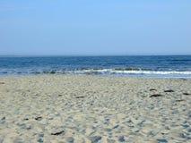 sandy na plaży Zdjęcie Royalty Free
