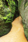 Sandy narrow creek and moss. Closeup of narrow sandy creek with green moss covered rocks Royalty Free Stock Image