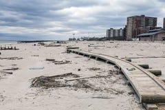 Sandy żniwo Obraz Stock
