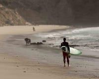Sandy ocean beach surfer walking Stock Images