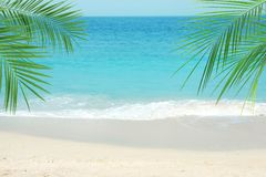 Sandy ocean beach and tropical palm leaves. On sunny day stock photo