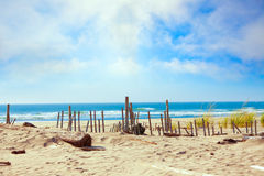 Sandy ocean shoreline with dunes. And grassy edge, fencing Royalty Free Stock Image