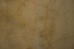 Sandy pale grey cracked plaster wall Stock Image