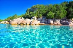Sandy Palombaggia-strand met pijnboombomen en azuurblauw duidelijk water, Corsica, Frankrijk royalty-vrije stock afbeeldingen