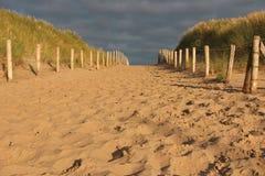 Sandy Path Stock Afbeeldingen