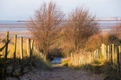 Sandy Path fotografía de archivo libre de regalías
