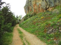 Sandy path along rock with flowers. Sandy path in spring along rock near the Cathar ruin Roquefixade in France Stock Photography