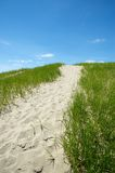 Sandy Path at the Beach. A path up a sandy hill at the beach, lined by grass, with blue sky and a few white clouds Royalty Free Stock Photos