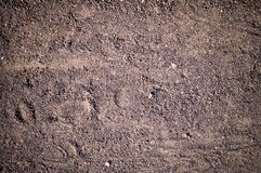 Sandy path with boot tracks. background, texture. Royalty Free Stock Image