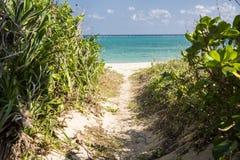 Sandy path through a bush Royalty Free Stock Images