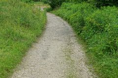 Sandy path among green grass and vegetation in the park. A long gray sandy path among the green grass and vegetation in the park stock photography