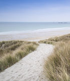 Sandy path leads down through sand dunes Stock Photography
