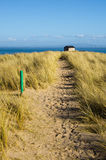 Sandy path through Marram Grass Stock Image