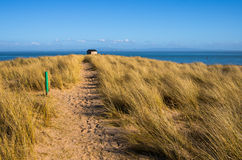Sandy path through Marram Grass Royalty Free Stock Photography