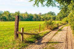 Sandy path between the pasture and the edge of the forest. In the Netherlands. The focus is on the foreground. It is a sunny day at the end of the summer season stock photos